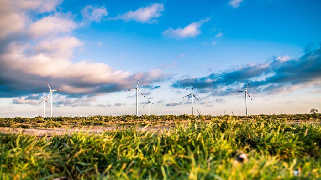 Sustainability like this wind farm is part of the advantage of loose-leaf tea