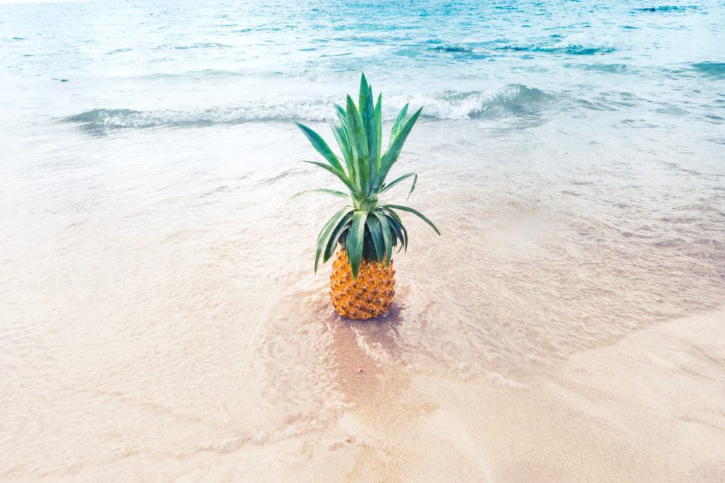 Vacation to Hawaii for beach and pineapple