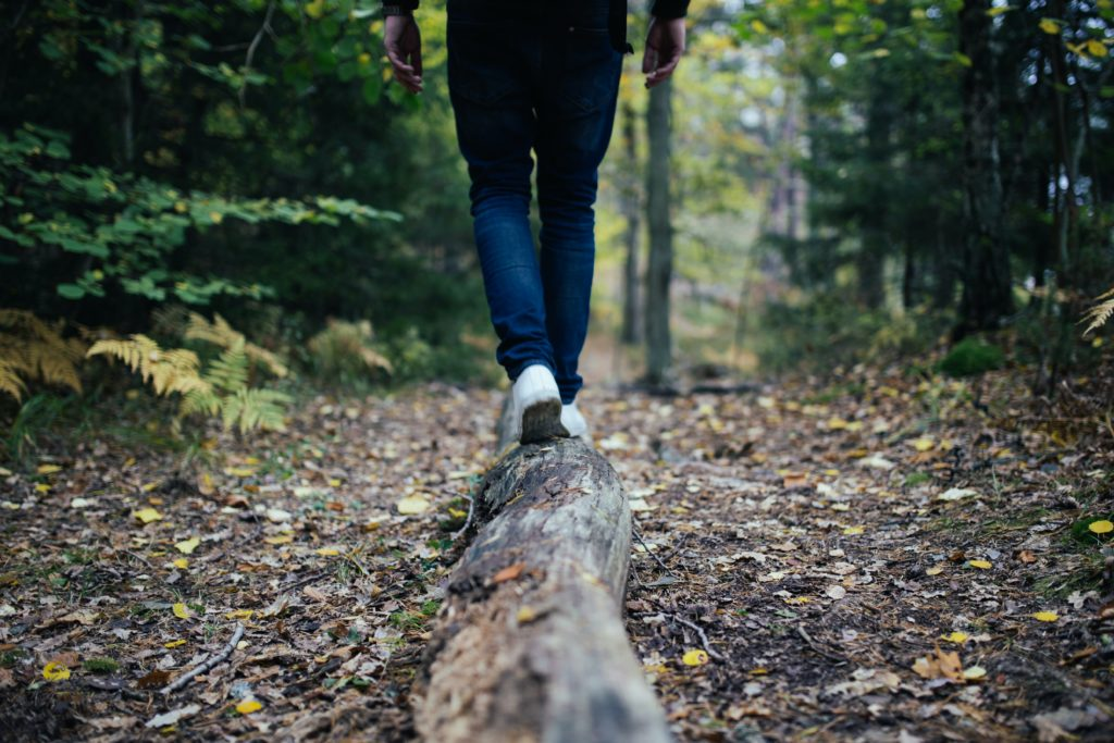 Balance, like that which is required to walk on a log, is key to health.